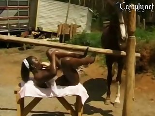 Sexy Sex Horse